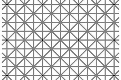 12 чёрных точек иллюзия